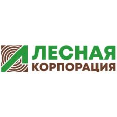 Тетива береза 50х300х4000 сорт АВ